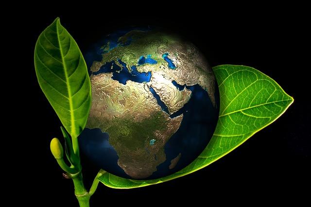 planeta Země v listu