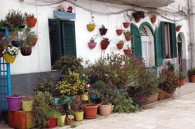 květiny před domem