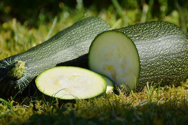 nakrájená cuketa položená na trávě na zahrádce
