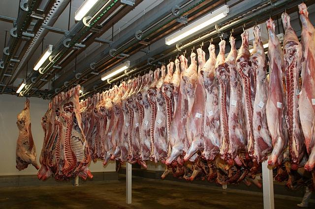 maso na jatkách čekající na zpracování